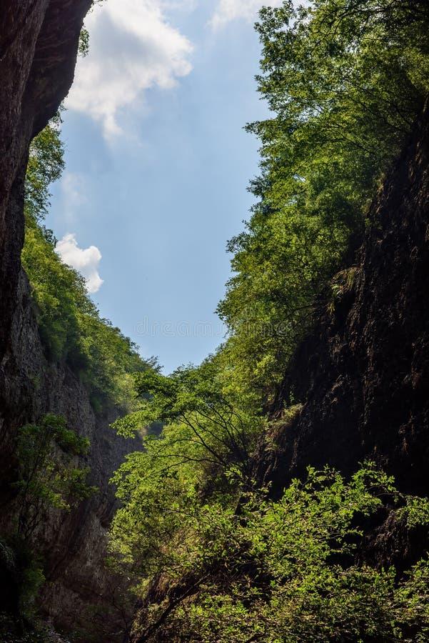 Stora Rift Valley i WanXi royaltyfri foto
