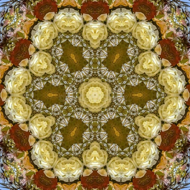 Stora sexhörniga blommor för fyrkantig ram i rund ordning på bröllop i Kalifornien på blå bakgrund arkivfoton