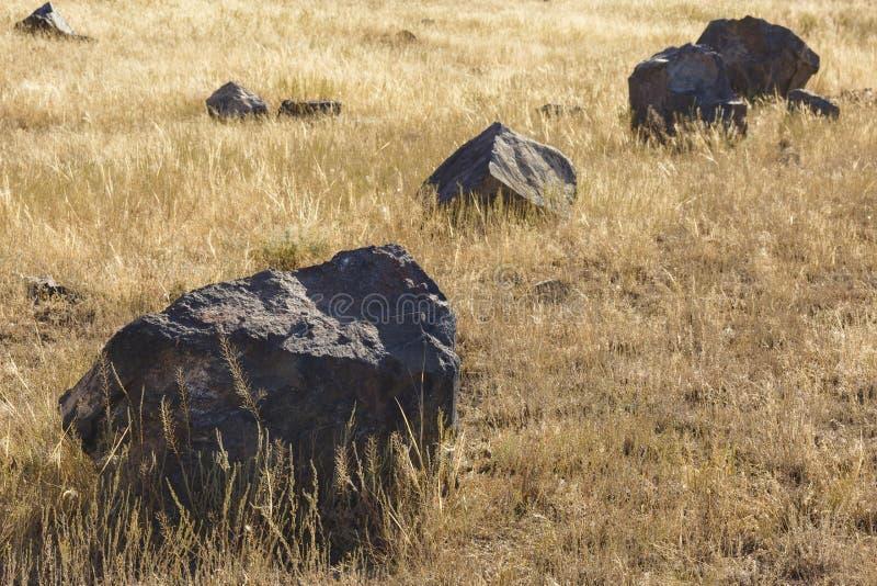 Stora stenar på fältet royaltyfria bilder