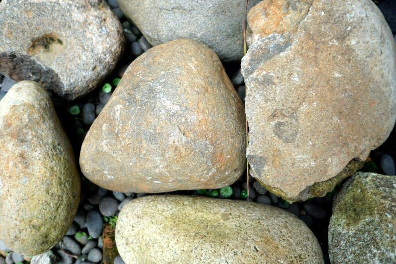 Stora stenblock i parkera arkivfoton