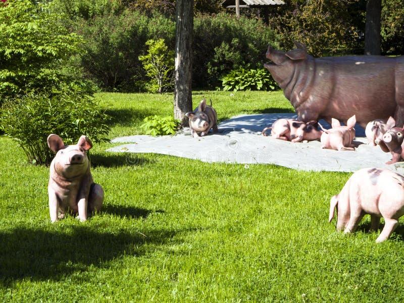 Stora svin och newborns som står på gräslag royaltyfria bilder