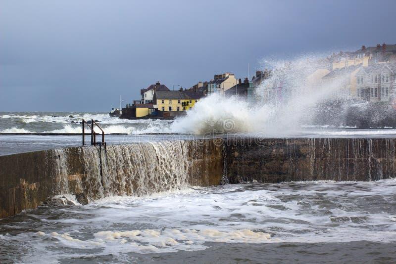 Stora vågor från det irländska havet under en vinterstorm slår hamnväggen på det långa hålet i Bangor Irland arkivbilder