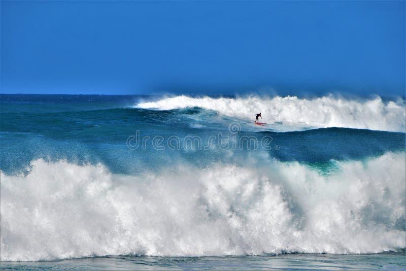 Stora vågor på den Waimea fjärden, Oahu, Hawaii, USA arkivfoton