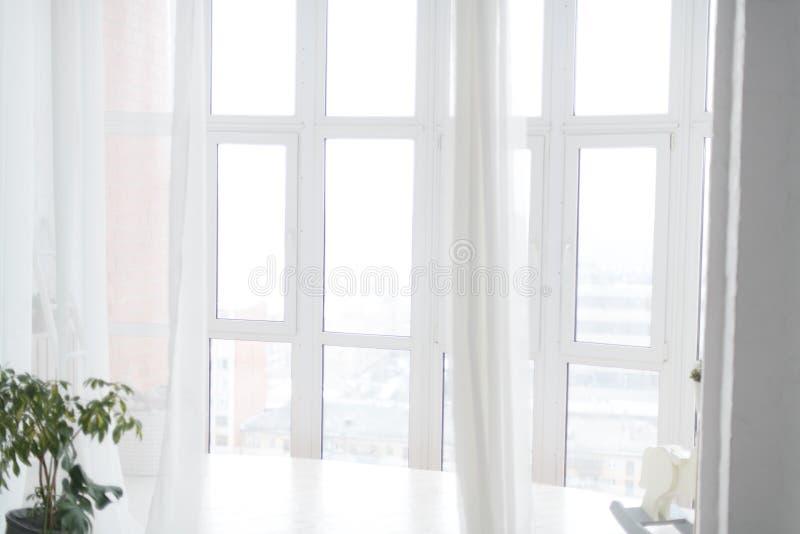 Stora vita ljusa Windows med genomskinliga gardiner horisontal royaltyfri bild