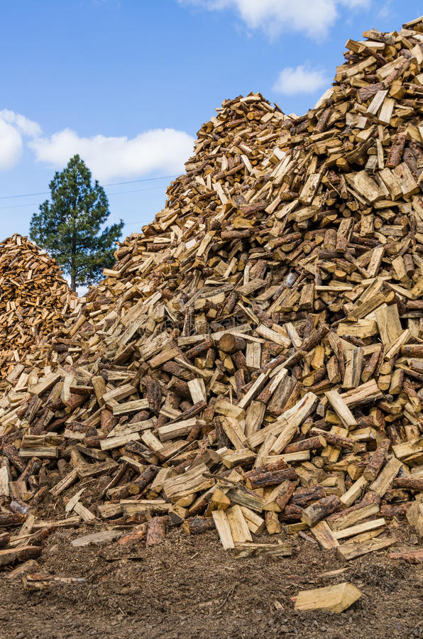 Download Firewood Prepared And Split For Use Stock Image - Image: 30265673