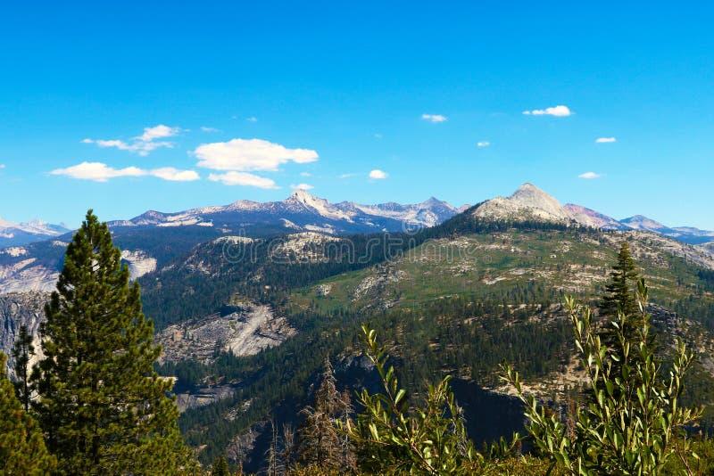 Storartad panorama av berg och trän av nationalparken Yosemite royaltyfri foto