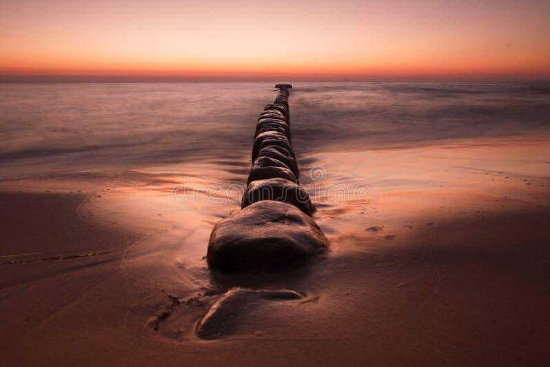 Storartad seascape på solnedgången med stenar täckte havsväxter royaltyfri foto