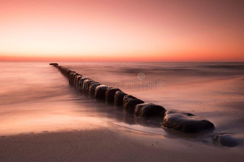 Storartad seascape på solnedgången med stenar täckte havsväxter royaltyfri bild