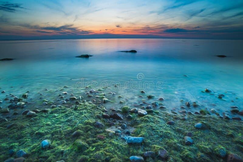 Storartad seascape på solnedgången med stenar täckte havsväxter royaltyfria foton