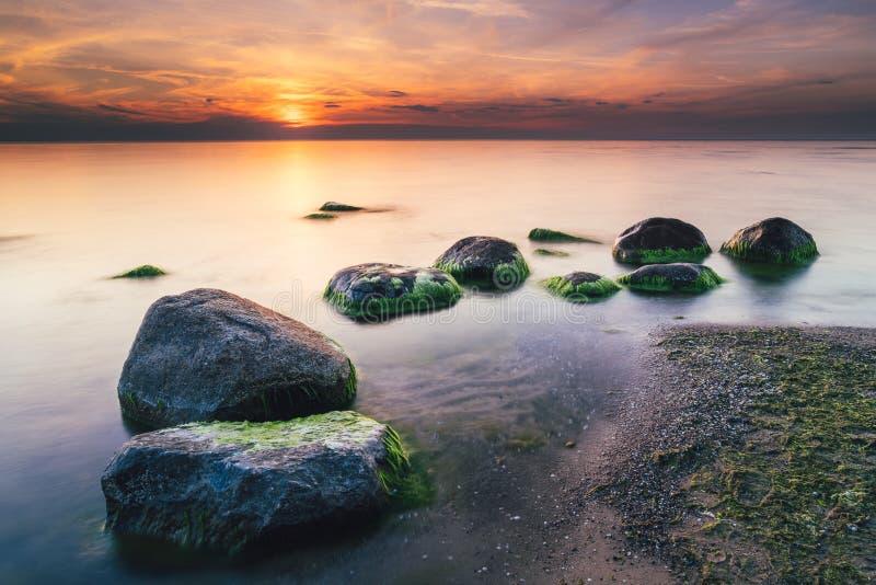 Storartad seascape på solnedgången med stenar täckte havsväxter royaltyfri fotografi