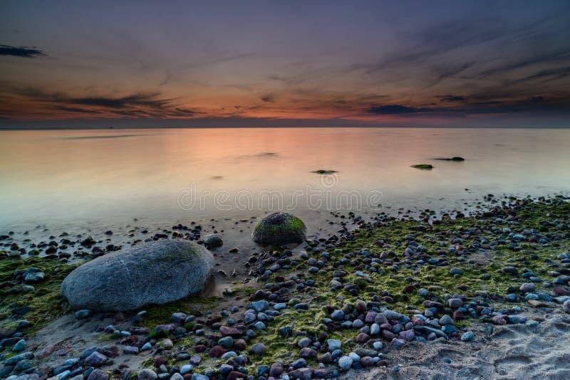 Storartad seascape på solnedgången med stenar täckte havsväxter fotografering för bildbyråer