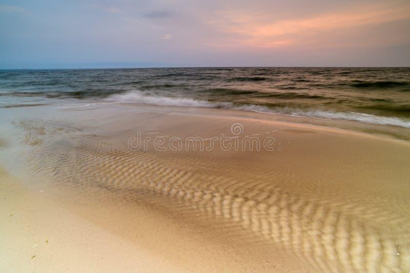 Storartad seascape på solnedgången med stenar täckte havsväxter arkivbilder