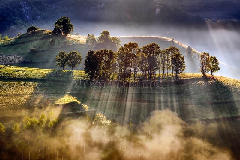 Storartad soluppgång i Transylvaniaet County i Rumänien med mist i höst royaltyfri foto