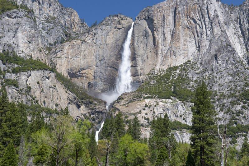Storartade yosemite fallls, nat yosemite parkerar, Kalifornien, USA arkivbild