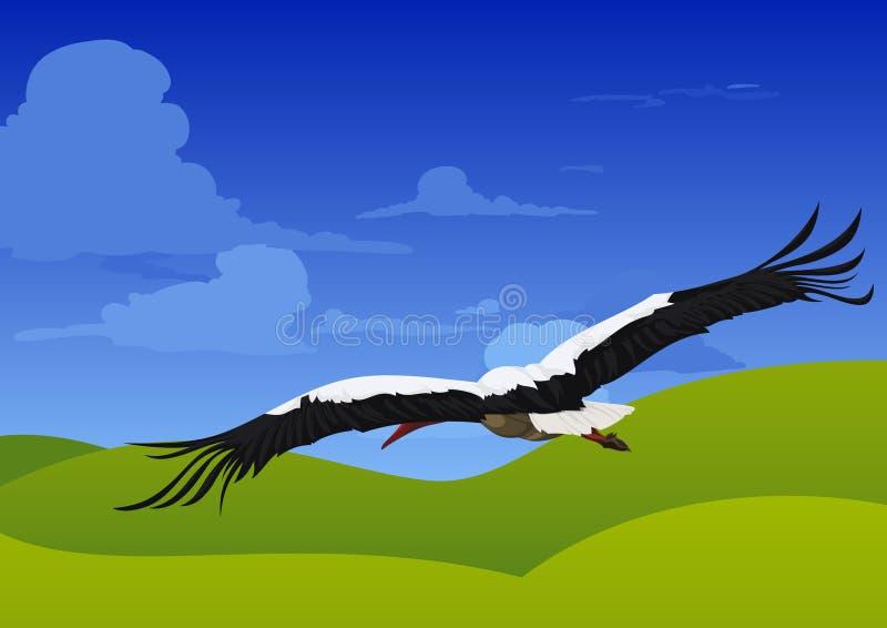 Storch stock abbildung