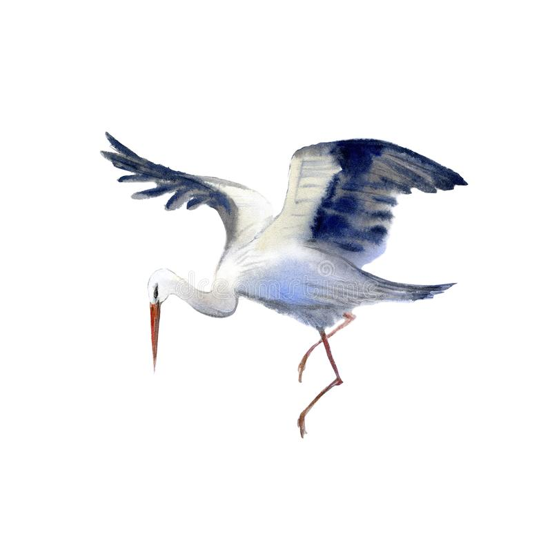 Storch im Flug Neugeborenes Bild vektor abbildung