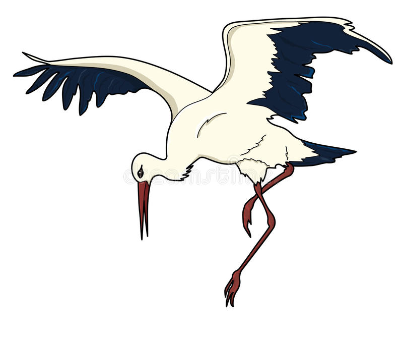 storch vogel vektor abbildung