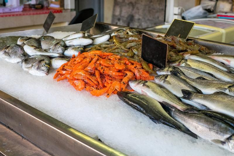 Store counter with fresh fish and shrimps royalty free stock image