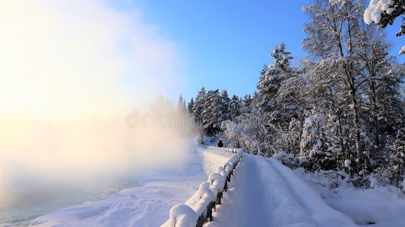 Storforsen dans un paysage fabuleux d'hiver photo libre de droits