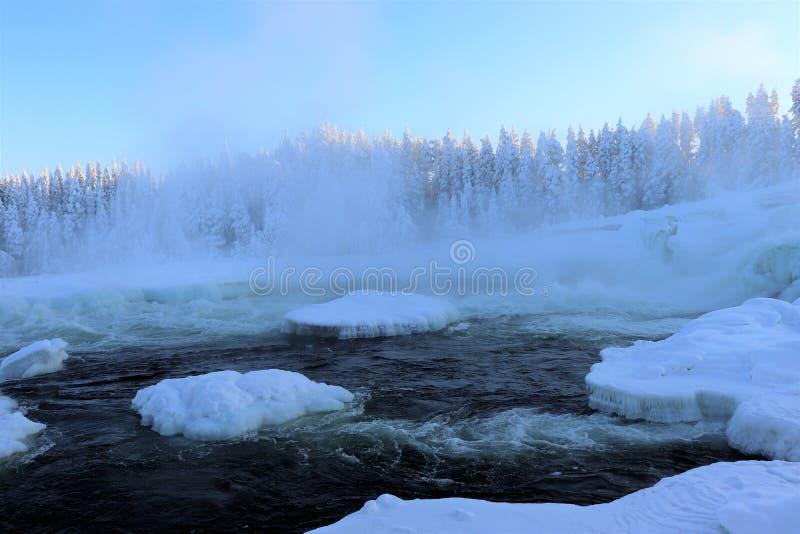 Storforsen dans un paysage fabuleux d'hiver photos libres de droits