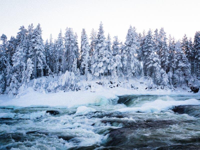 Storforsen, duża siklawa w Szwecja zdjęcie royalty free