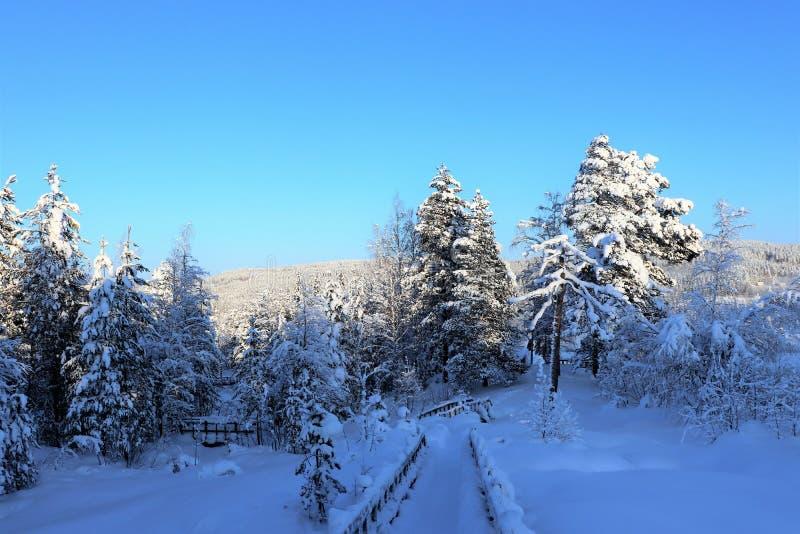 Storforsen in einer fabelhaften Winterlandschaft lizenzfreie stockbilder