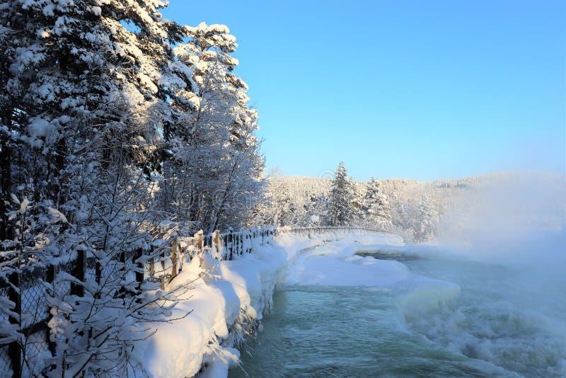 Storforsen en un paisaje fabuloso del invierno fotografía de archivo libre de regalías
