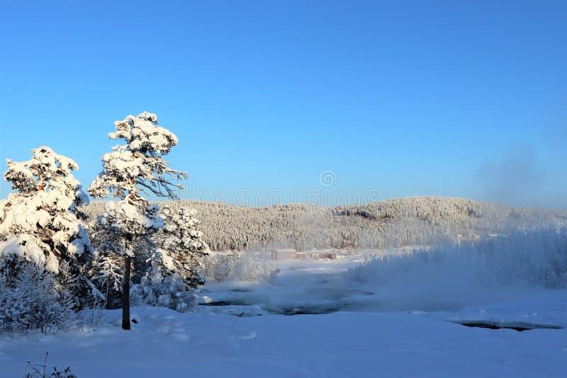 Storforsen en un paisaje fabuloso del invierno imágenes de archivo libres de regalías