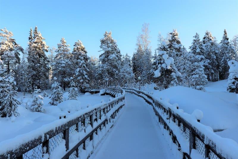 Storforsen en un paisaje fabuloso del invierno imagenes de archivo
