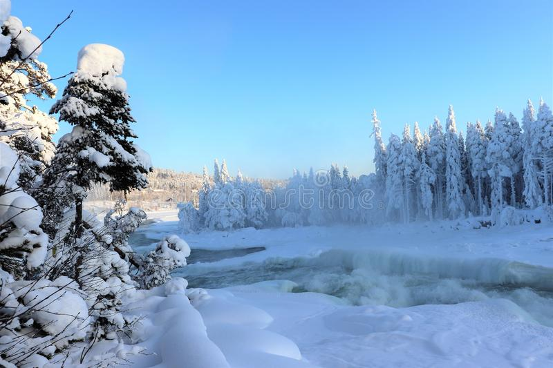 Storforsen in a fabulous winter landscape. Storforsen is Europe`s largest unregulated rapids, where the total length of the entire rapids, from start to finish royalty free stock photo