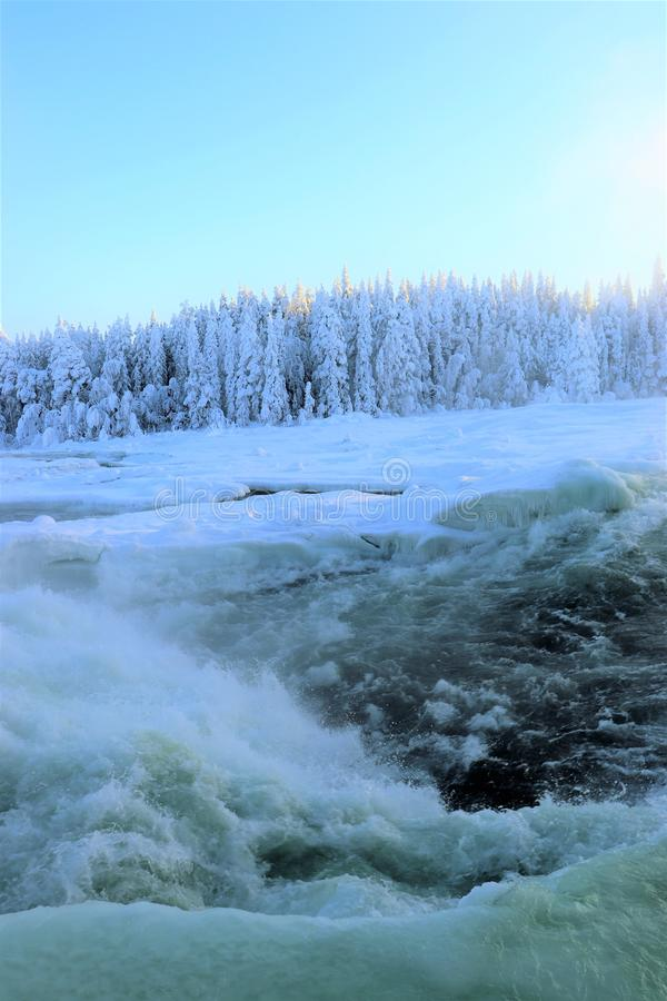 Storforsen in a fabulous winter landscape. Storforsen is Europe`s largest unregulated rapids, where the total length of the entire rapids, from start to finish royalty free stock photos