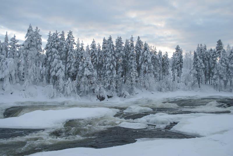 Storforsen, siklawa w szwedach Lapland zdjęcia stock