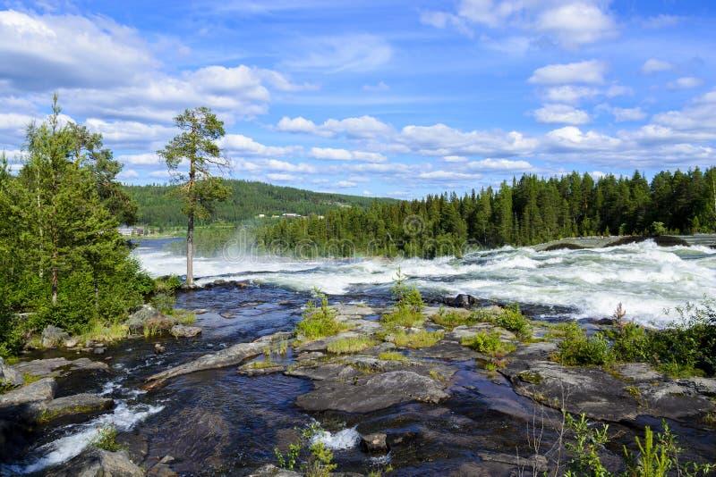 Storforsen vattenfall i Sverige royaltyfria bilder