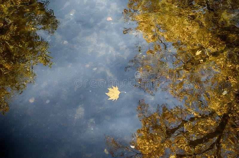 Storia di autunno fotografia stock
