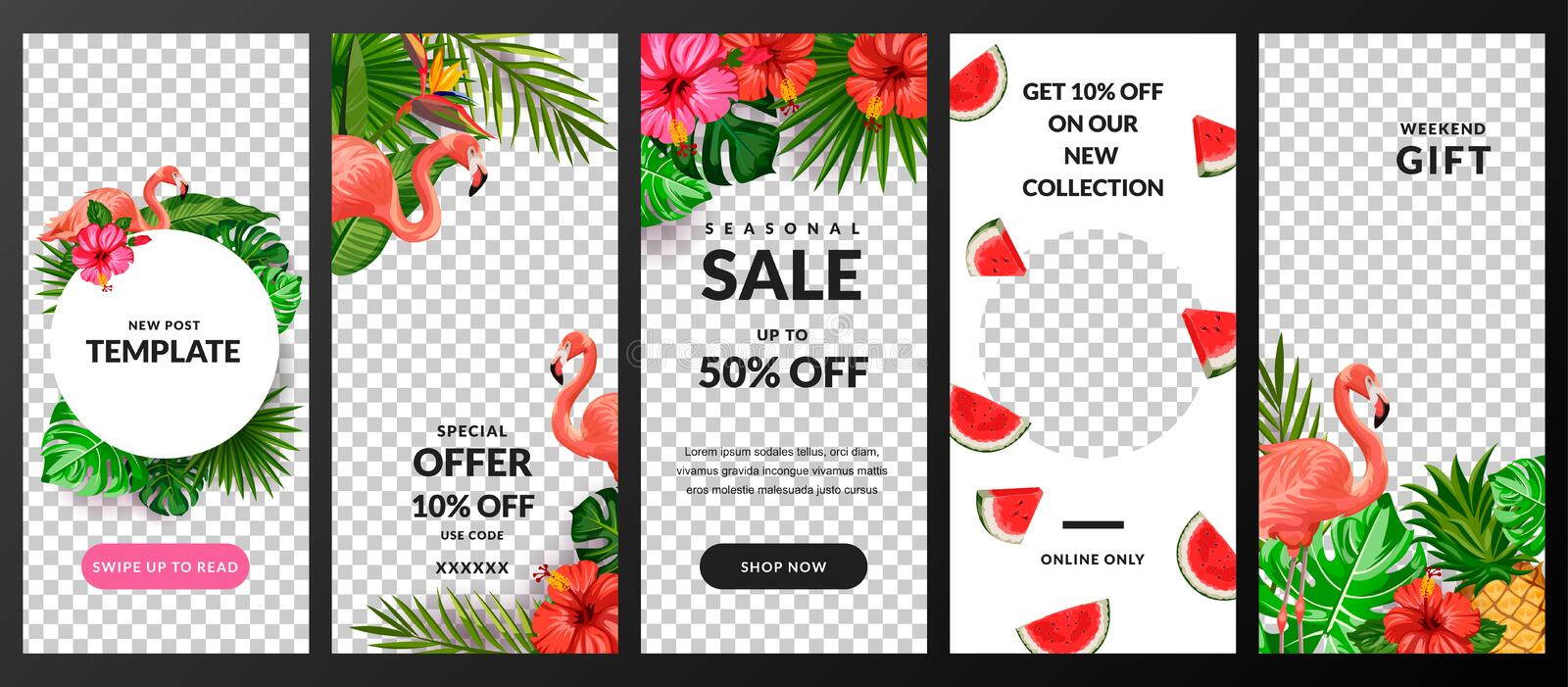 Stories, news or new post vector template for social network. Story background with tropical palm leaves and flamingo stock illustration