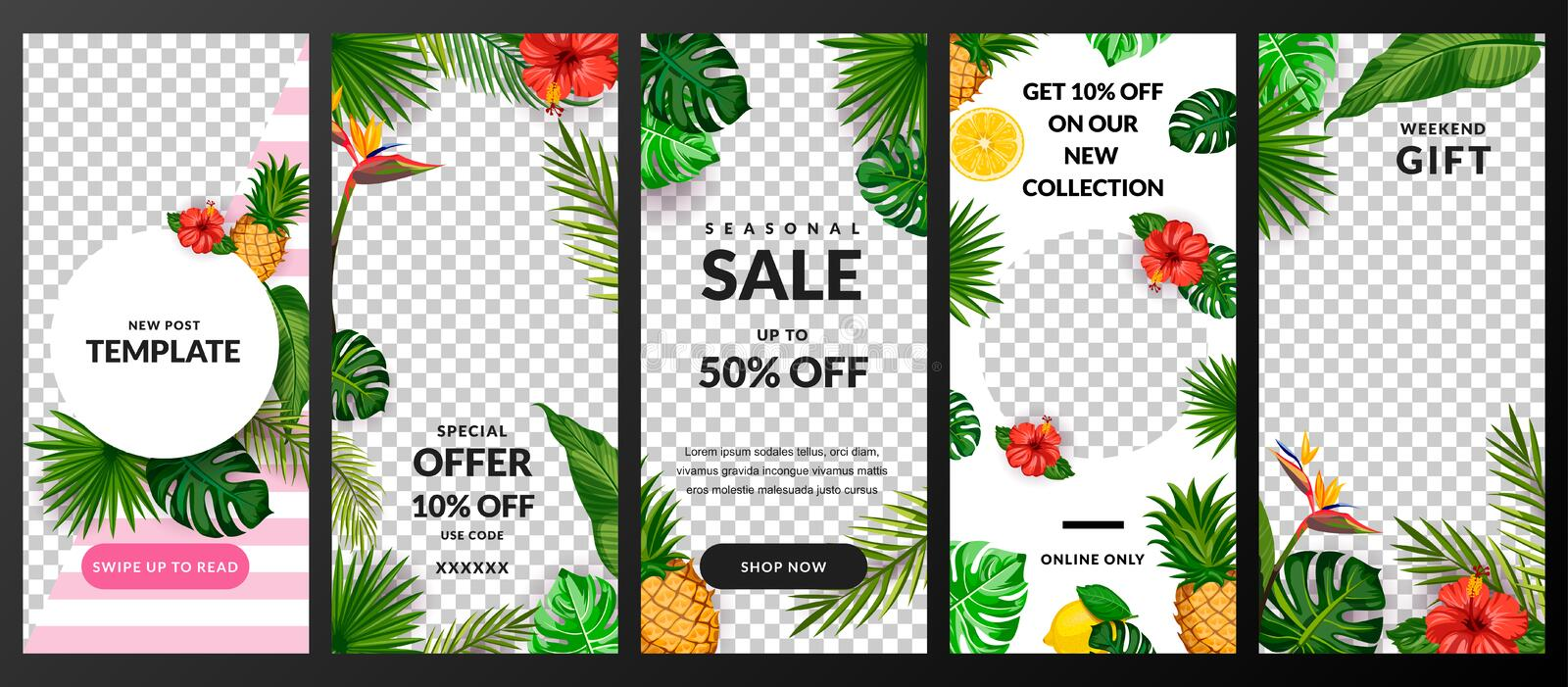 Stories, news or post vector template for social network. Story tropical background. Trendy summer design stock illustration