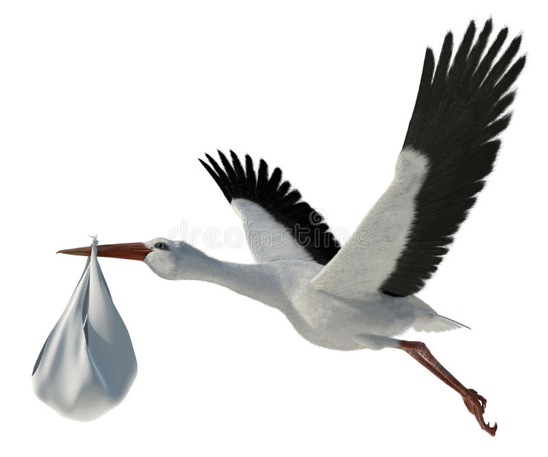 Stork & Baby. Classic depiction of a stork in flight delivering a newborn baby