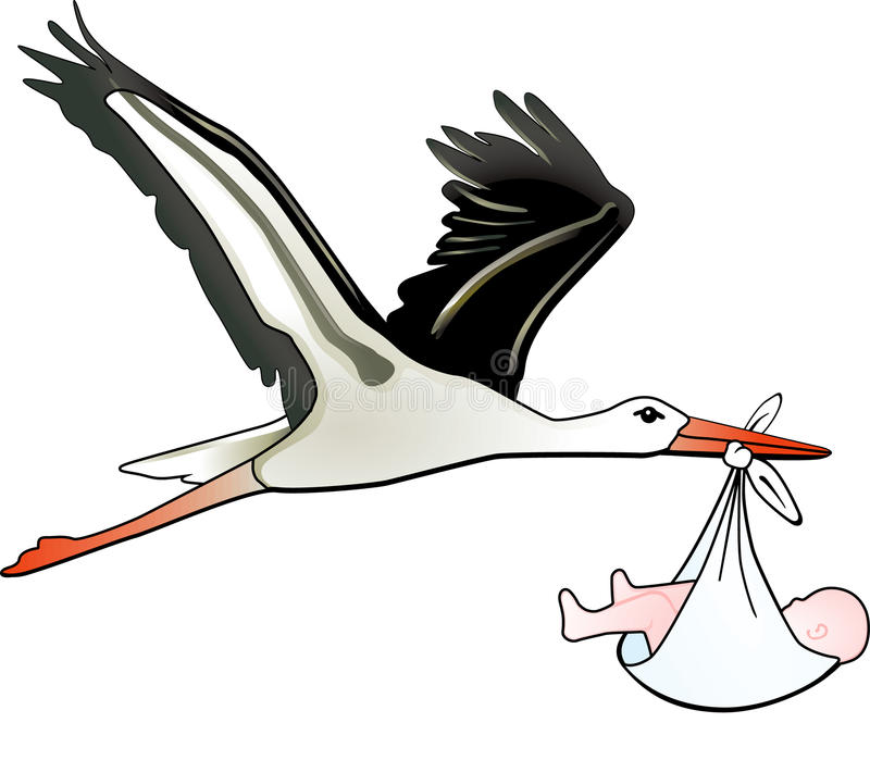 Stork childbirth royalty free stock photos