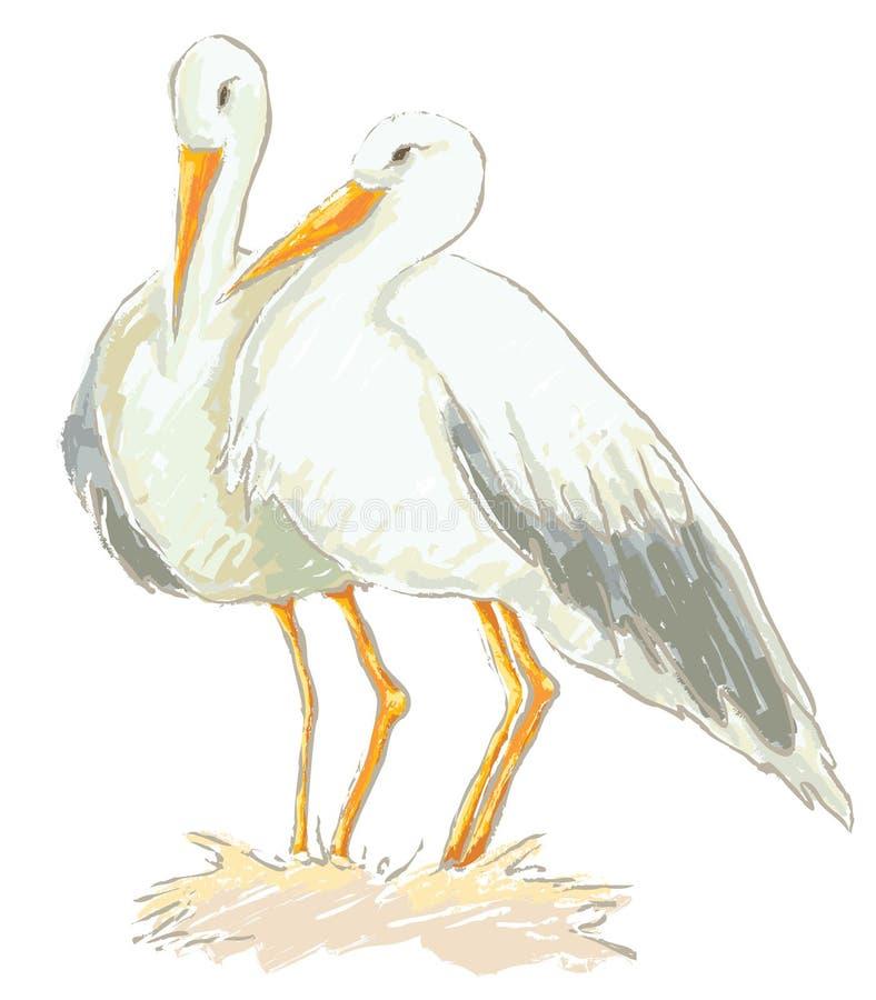Download Stork couple vector stock vector. Illustration of illustration - 10865524