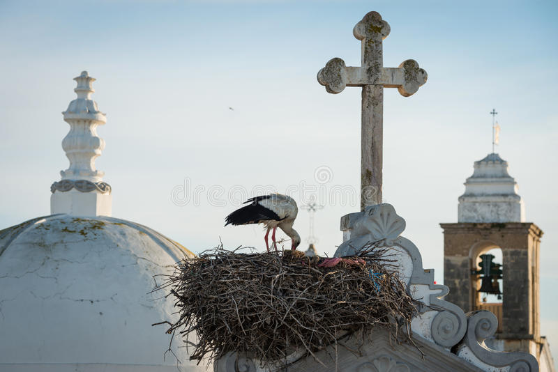 Stork nest and church towers church towers in Olhao, Portugal. Stork nest and towers of main church of the city Olhao, Portugal at dawn stock photography