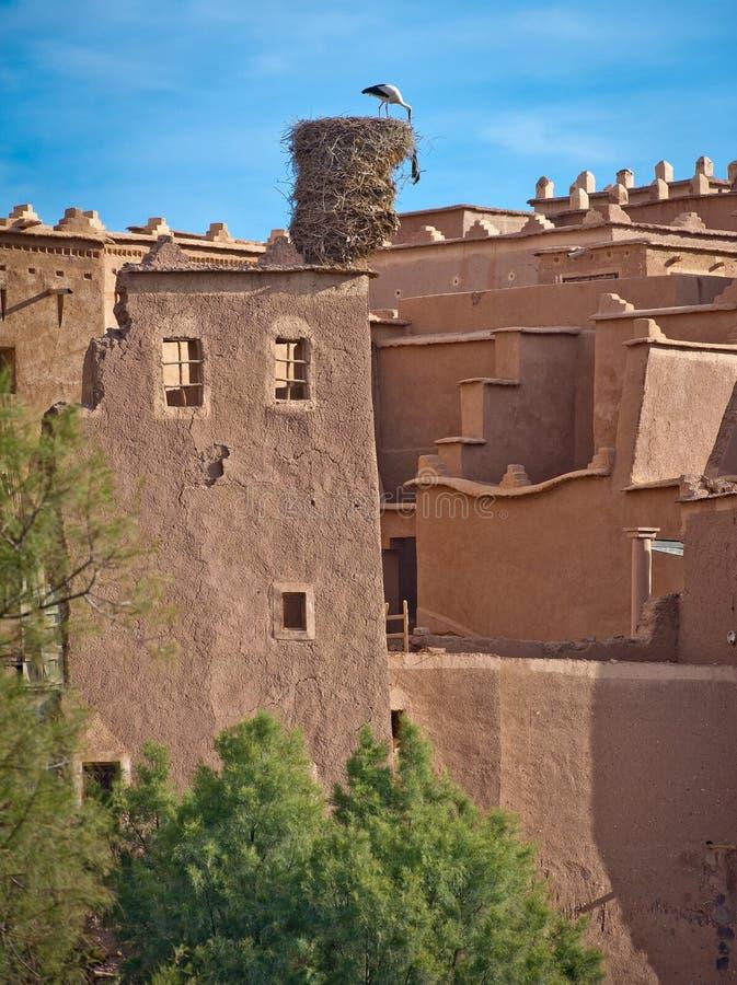 Download Stork Nest On Kasbah,morocco Royalty Free Stock Images - Image: 18057849