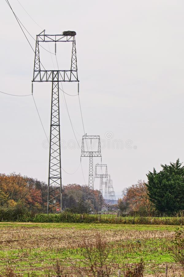 Stork nest on top of high electric voltage pole stock images