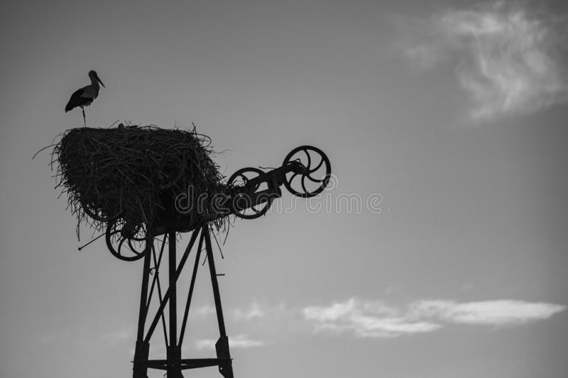 Stork over structure stock image