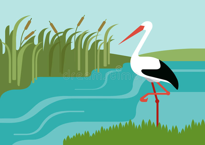 Stork river reeds flat design cartoon vector wild animals birds royalty free illustration