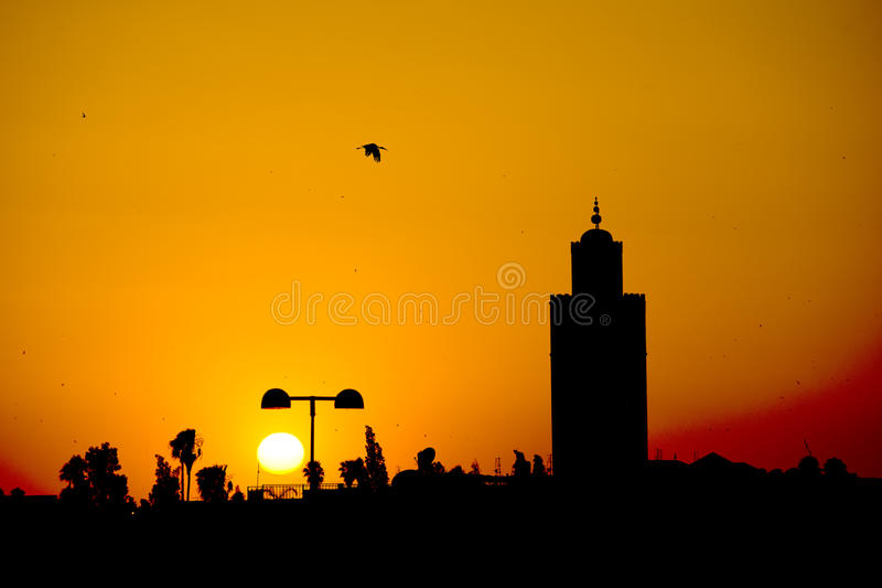 A stork silhouette on Marrakech Mosque. Sunset view stock photo