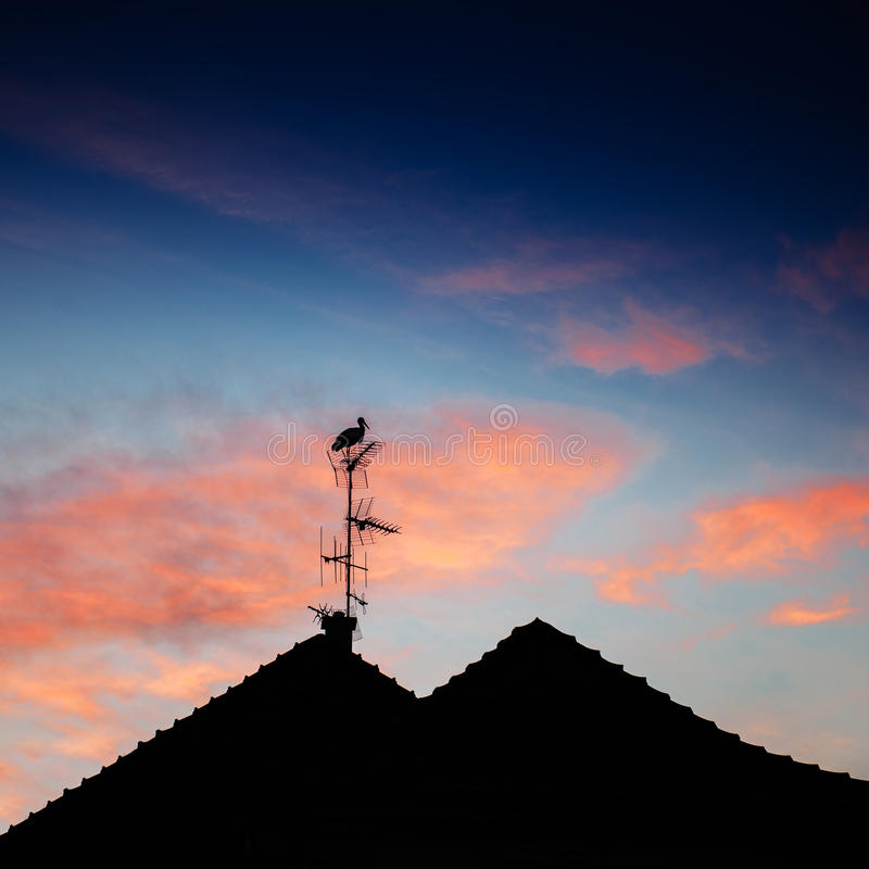 Stork silhouette standing roof stock photos