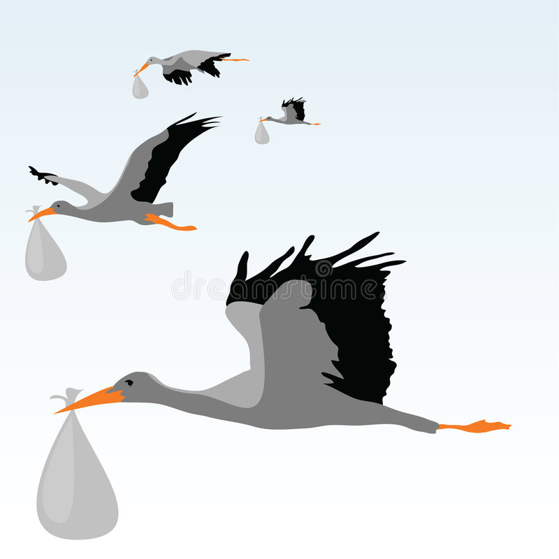 Download Storks stock vector. Illustration of gift, celebration - 8946616