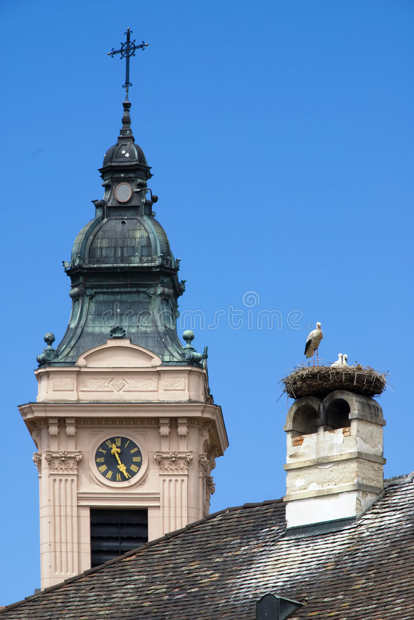 Download Storks on a roof stock photo. Image of babies, stork, austria - 2765200