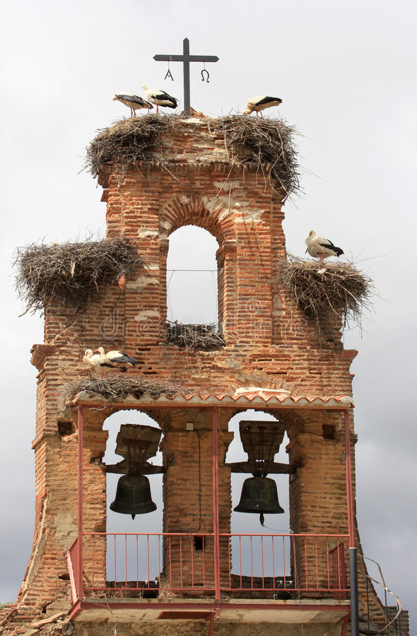 Free Storks Upon Nest Upon A Spanish Belfry Royalty Free Stock Photo - 7562585