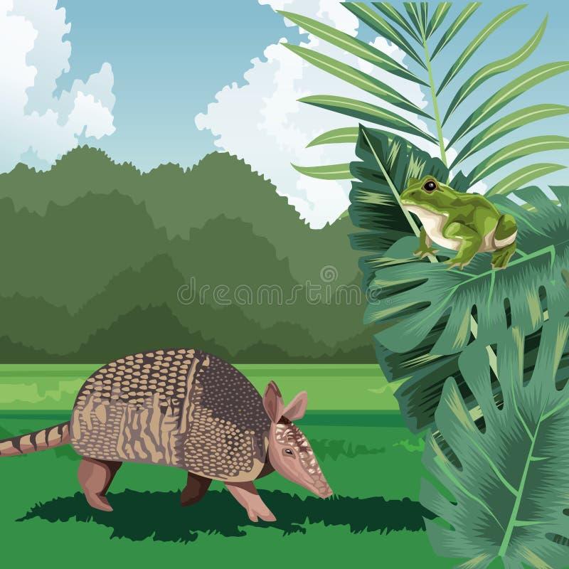 Storlig armadillotropisk fauna och flora stock illustrationer